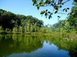 The Devils Bathtub Mendon Ponds Park