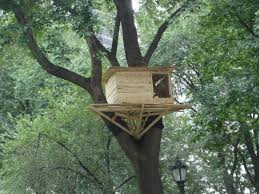 Free Tree House Plans Deluxe Single Treehouse Treeless Childrens