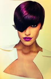 71 best plum love images on pinterest hairstyles colorful hair