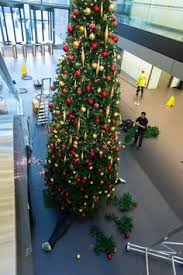 Decorated Christmas Trees Vancouver by Christmas Displays From Ambius Uk Here U0027s To The Holidays Pinterest