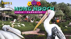 Nong Nooch Tropical Botanical Garden by Nong Nooch Tropical Garden In Pattaya Thailand Part 1 Youtube