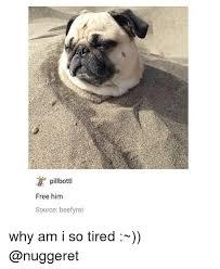 So Tired Meme - pillbottl free him source beefyrat why am i so tired meme on