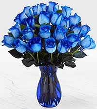 blue roses blue roses blue roses for sale and blue tulsa by ftd