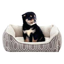 Petsmart Dog Bed Top Paw Cuddler Dog Bed U2013 Restate Co