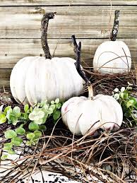 white pumpkins 31 amazing fall decorating ideas using white pumpkins