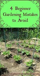 best 25 vegetable gardening ideas on pinterest gardening