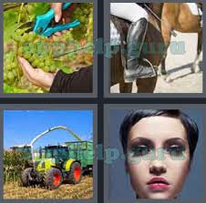 4 pics 1 word all level 601 to 700 4 letters answers game help