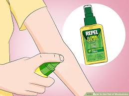 How To Keep Mosquitoes Away From Backyard 3 Ways To Get Rid Of Mosquitoes Wikihow
