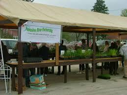 native plants for pots pewaukee river partnership annual native plant sale