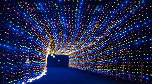 drive by christmas lights this drive thru christmas light tunnel is just 2 hours from toronto