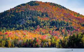 Agrarian Skies Map Fall Foliage 2017 Map Insidehook