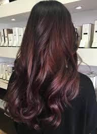 brown plum hair color burgundy plum hair color with a dark base hairstyle haircut