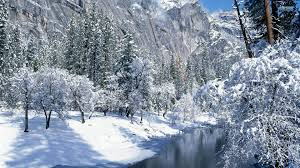 snowy mountains with trees wallpaper