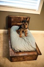 Bunk Bed For Dogs Pet Bed Made Out Of Pallets Pallet Bed Bed Made From