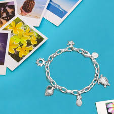 sterling silver charm link bracelet images Sterling silver charms for bracelets necklaces jpg