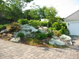 rock garden plans wonderful looking small rock garden ideas
