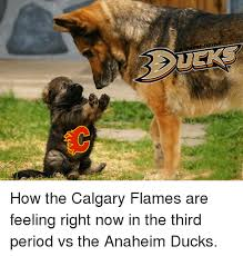 Anaheim Ducks Memes - how the calgary flames are feeling right now in the third period