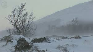 winter sound snowstorm with snowdrift and blizzard