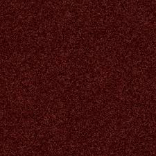 home decorators collection carpet sample slingshot ii in color