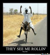 donkey rolling by dimitrig17 meme center