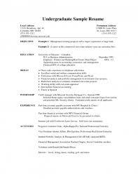 free writing resume sle resumenternships exles cv student college sle no free resumes