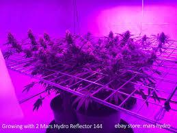 Led Grow Lights Cannabis Mars Reflector 720w Led Grow Light Full Spectrum Hydro Indoor
