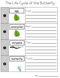 butterfly lifecycle sequenced writing activity science