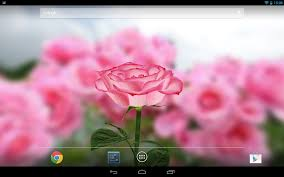 google images flower 3d rose live wallpaper android apps on google play