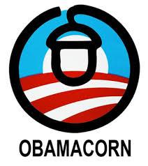 Email: ohacorn@acorn.org