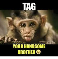 Handsome Meme - tag your handsome brother meme on me me