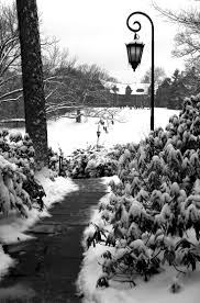 32 best wellesley images on pinterest wellesley college