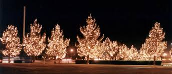Commercial Christmas Decorating Companies by Christmas Decor By Watermark Maryland Dc Holiday Decorating