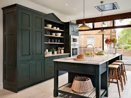 green kitchen cabinets for sale 75 beautiful kitchen with green cabinets pictures ideas