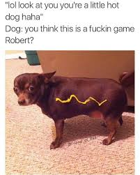 Chihuahua Meme - i m a chihuahua not a dachsund memebase funny memes