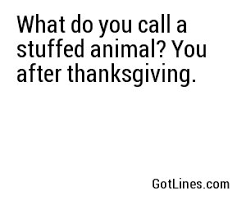 do you call a stuffed animal you after thanksgiving