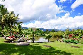 coral gables luxury homes mauritius africa luxury homes and mauritius africa luxury real