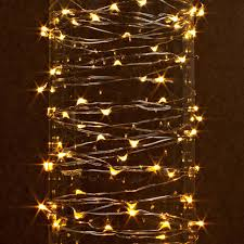 Brown Wire Christmas Lights Outdoor Led Micro Lights 20 U0027 Christmas Lights Pinterest