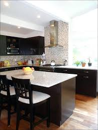 Painting Kitchen Cabinets Blue Kitchen Painted Kitchen Cabinets Color Ideas Light Grey Kitchen