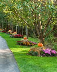 Autumn Tree Decorations Interior Design Ideas New Fall Decor Ideas Home Bunch