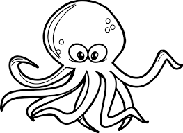 octopus coloring page wecoloringpage