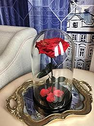 enchanted rose that lasts a year amazon com beauty and the beast rose in glass dome belle