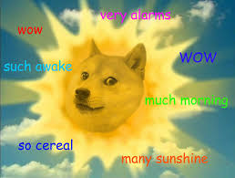 Top Doge Memes - year of the doge such meme very 2013 wow
