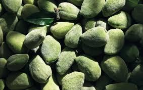 bath products almond shower oil l u0027occitane uk