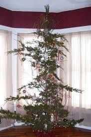 9 obnoxious trees soft rock b105 7 wyxb indianapolis