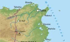 tunisia physical map where is tunisia located on the world map