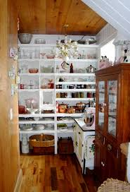 Pantry Decorating Ideas 108 Best Pantries Images On Pinterest Kitchen Home And Pantry Ideas