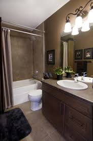 bathroom color idea glamorous brown bathroom color ideas images ideas house design