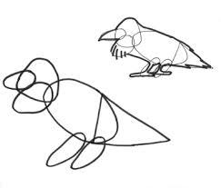 draw birds naturalist journal