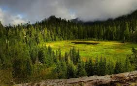 Valley Oregon Suggested Hikes Crabtree Valley Oregon