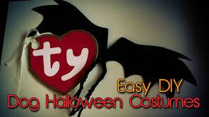 diy dog halloween costume dog halloween costumes diy bat wings u0026 beanie baby tag